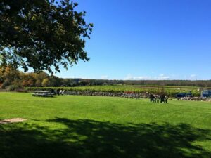 Providence Rhode Island Limo Van service to Winery Wine Tours